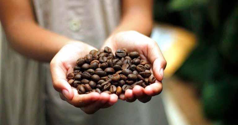 Какой-кофе-в-зёрнах-самый-лучший